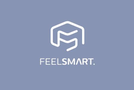 Feelsmart_Logo