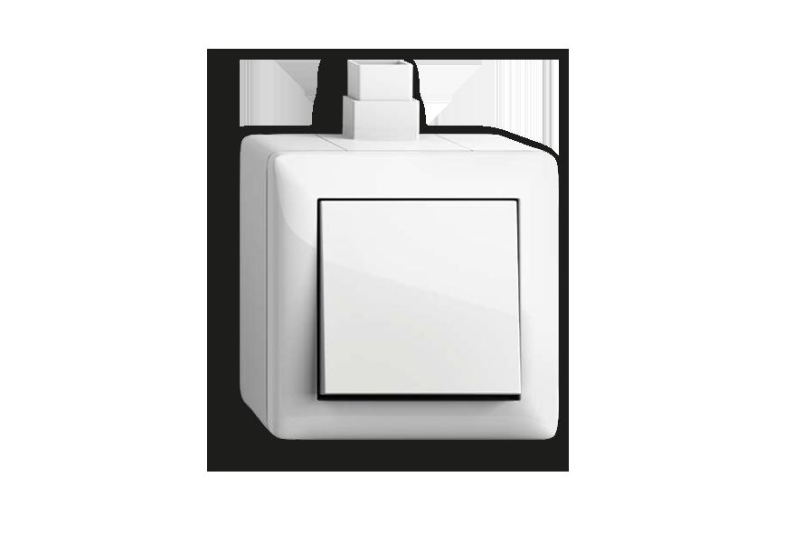 Gira Standard 55 mit Aufputzgehäuse