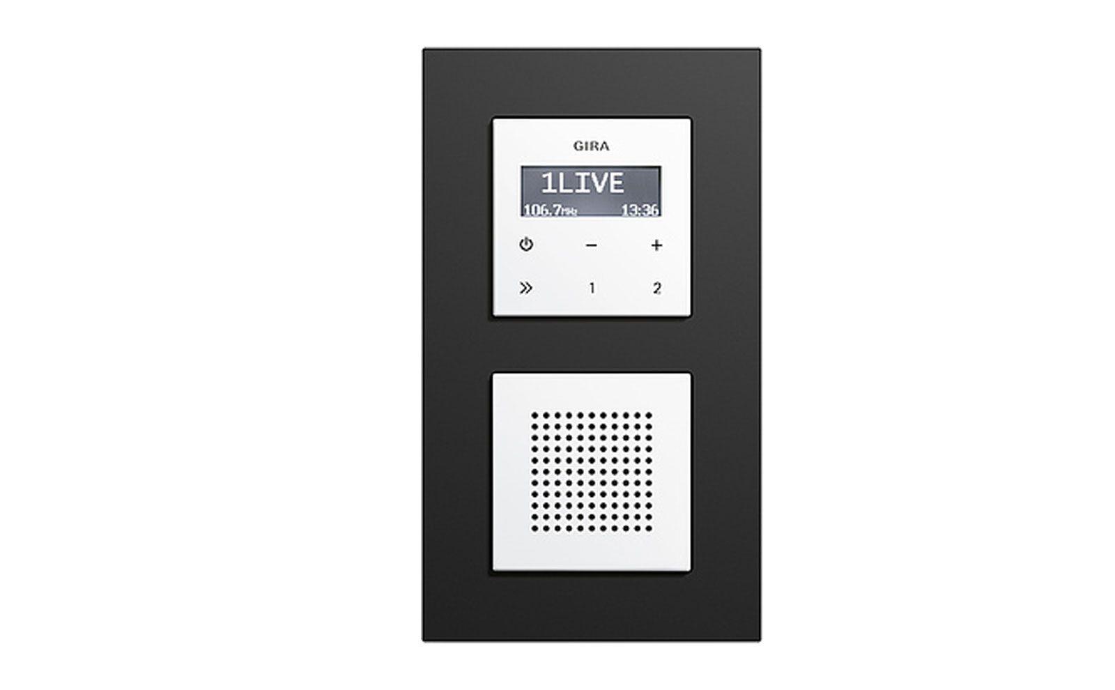 Gira Radio Gira Esprit Linoleum-Multiplex